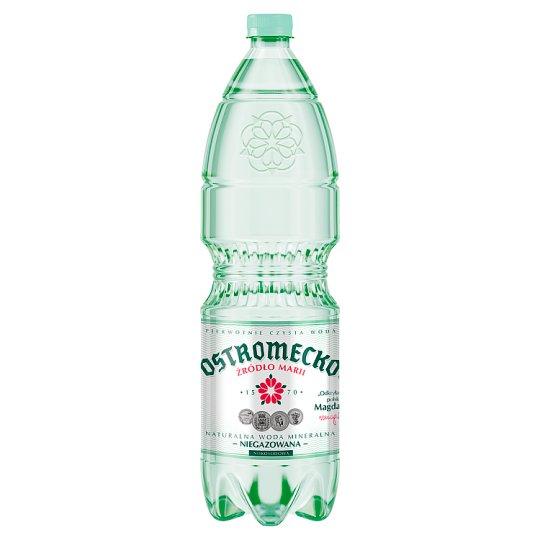 Ostromecko Naturalna woda mineralna niegazowana 500 ml