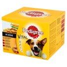 Pedigree Vital Protection in Gravy Complete Dog Food 2.4 kg (24 x 100 g)