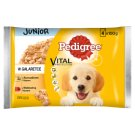 Pedigree Vital Protection Junior in Jelly Complete Dog Food 400 g (4 Sachets)