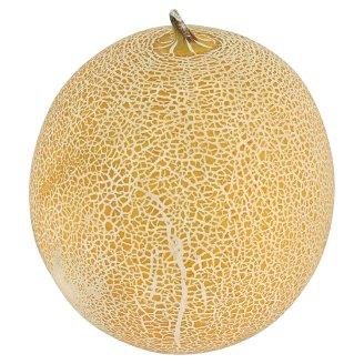 Melon Galia premium