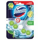 Domestos Power 5+ Green Tea & Citrus Zest Kostka toaletowa 55 g
