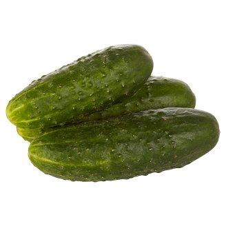 Ground Cucumbers