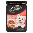 Cesar with Delicate Beef and Carrot in Sauce Complete Dog Food 100 g