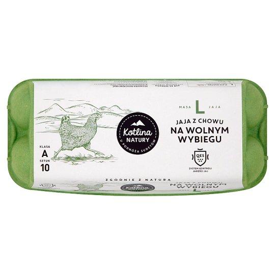 Kotlina Natury Free-range Eggs Size L 10 Pieces