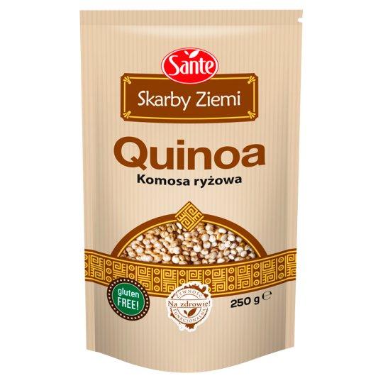 Sante Skarby Ziemi Quinoa 250 g