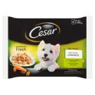 Cesar Choice of Flavors in Jelly Complete Dog Food 400 g (4 Sachets)