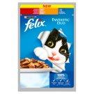 Felix Fantastic Duo Karma dla dorosłych kotów z wołowiną & drobiem w galaretce 100 g