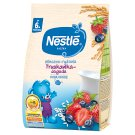 Nestlé Milk and Rice Porridge Strawberry-Blueberry after 6 Months Onwards 230 g