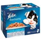Felix Fantastic Karma dla dorosłych kotów wybór rybnych smaków w galaretce 1200 g (12 x 100 g)