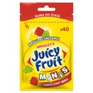 Juicy Fruit Minis Chewing Gum Fruit Mix 28 g (40 Pieces)