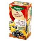 Herbapol Herbaciany ogród Czarna porzeczka z cytryną Herbatka owocowo-ziołowa 54 g (20 saszetek)