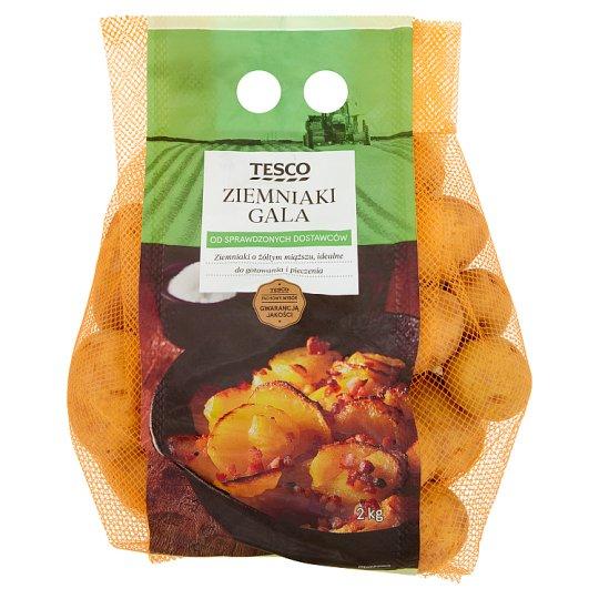 Tesco Ziemniaki Gala 2 kg