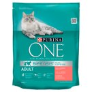 PURINA ONE Adult Complete Food for Adult Cats with Salmon and Whole Grains 800 g