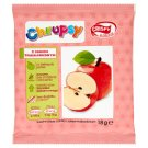 Crispy Natural Chrupsy Apple with Strawberry Juice Dried Chips 18 g