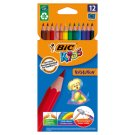BiC Kids Evolution Colouring Pencils 12 Colours