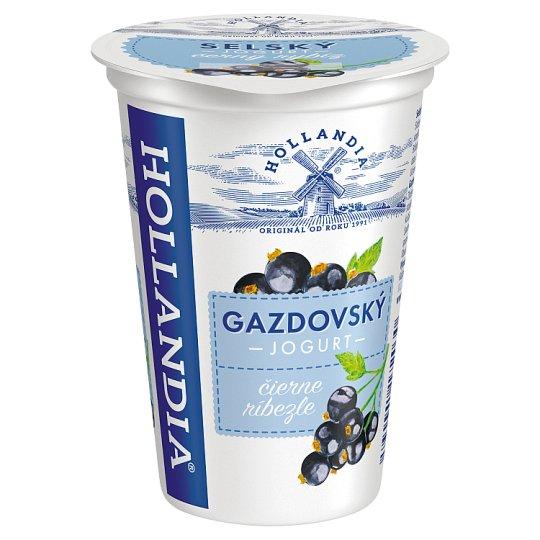Hollandia Gazdovský jogurt čierne ríbezle s kultúrou BiFi 200 g