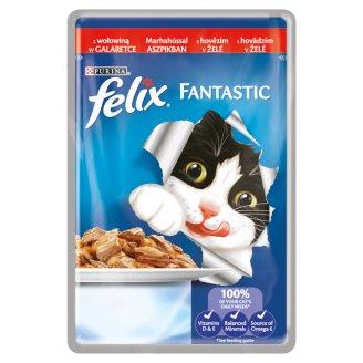 FELIX Fantastic s hovädzím v želé 100 g