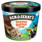 Ben & Jerry's Peanut Butter Cup mrazený krém 100 ml
