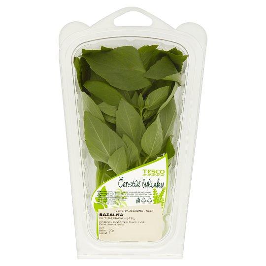 Tesco Čerstvé Bylinky Basil 20 g