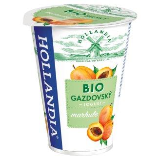 Hollandia Bio jogurt gazdovský marhule s kultúrou BiFi 180 g