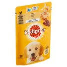 Pedigree Vital Protection Junior 100% Complete Nutrition with Chicken Meat and Rice in Jelly 100 g