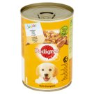 Pedigree Junior Chicken in Jelly Complete Dog Food 400 g
