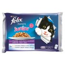 FELIX Fantastic Junior with Chicken and Salmon in Jelly 4 x 100 g