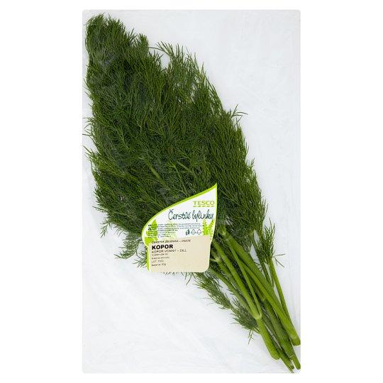 Tesco Čerstvé bylinky Dill Fragrant 40 g