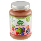 Ovko Infant Formulas Berries Apple with Raspberries and Blueberries Sugar 190 g
