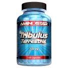 Aminostar Tribulus Terrestris 500 mg 120 ks