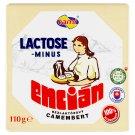 Tami Encián bezlaktózový camembert 110 g