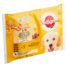 Pedigree Junior with Chicken and Turkey in Juice Complete Food for Dogs and Puppies 4 x 100 g