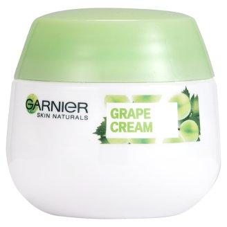 Garnier Skin Naturals Botanical Moisturizing Cream 50 ml