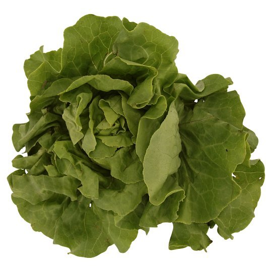Lettuce Salad pc