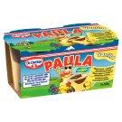 Dr. Oetker Paula Vanilla 2 x 100 g