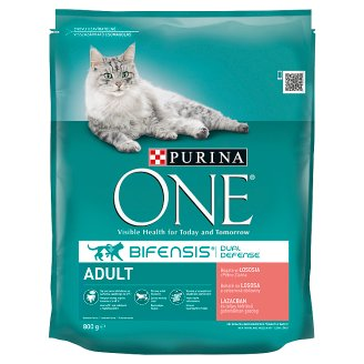 Purina ONE Adult Rich in Salmon and Whole Grain Cereals 800 g